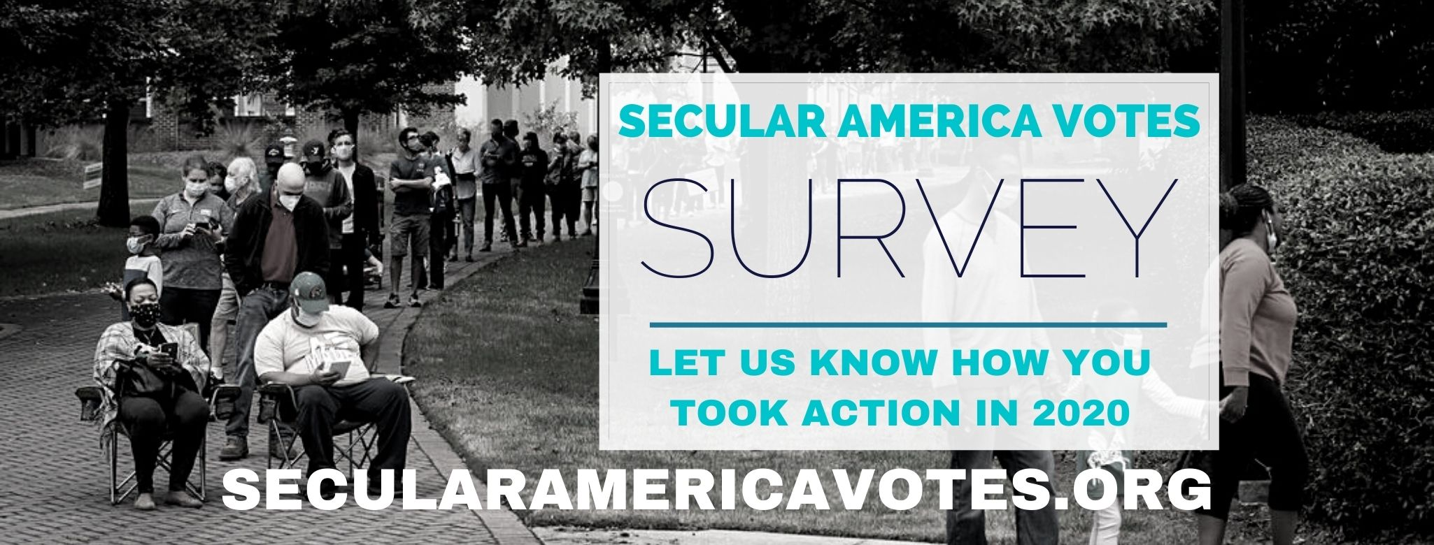SAV Survey